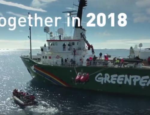 Greenpeace apuesta por la Comunicación en positivo