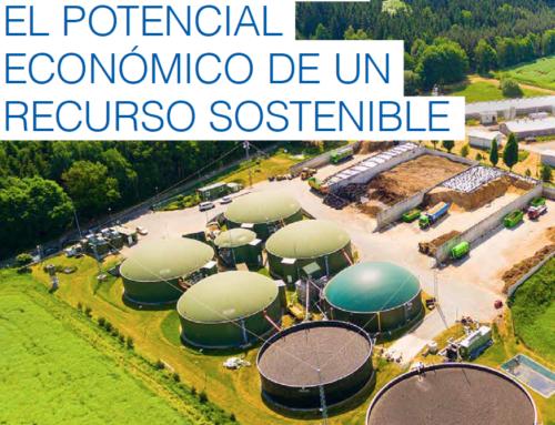 Reportaje: Gas Renovable, el Potencial de un Recurso Sostenible