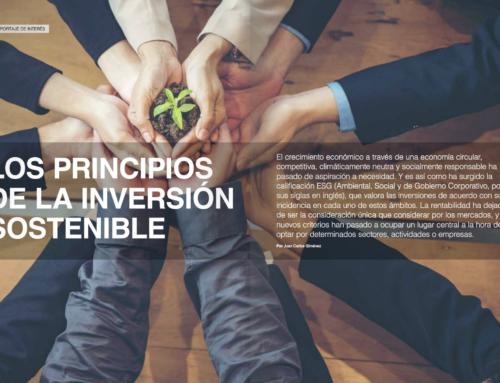 Los principios de la inversión sostenible